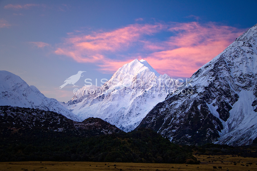 Sunset on the summit of Mt Cook / Aoraki, taken from the Hermitage and looking up Hooker Valley