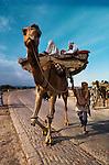 Baluchistan, Pakistan, 1980