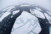 Pack ice on sea, Svalbard, Norway.