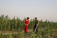 Nepal - Meghauli - Bhupendra Malla Thakuri, 32 and his wife Manju Malla, 24 having a walk in their corn fields, in the Central district of Chitwan. In June 2011 Thakuri received a permanent injury in a car accident while he was working as a driver in Qatar. It took him more than two years of legal battles to receive a compensation of 33,500 USD. During this period, Thakuri didn't receive any salary, surviving thanks to the help of his co-workers, who secretly fed and hosted him in their labour camp. Thakuri will never be able to walk properly again, tend his field or do any manual job. He is now thinking about setting up a small shop in Meghauli, but he is afraid this will not be enough to feed his wife and three children.