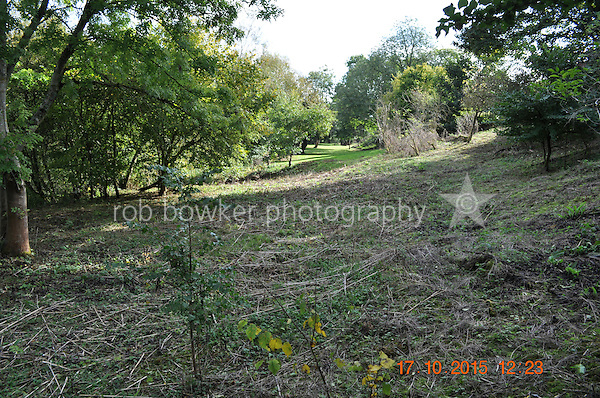 RIVERSIDE AMENITY LAND AT STREATLEY. TITLE NO: BK381630<br /> With back to boundary fence looking downstream the full length odf the lower 'lawn'.