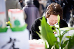 A woman weeps and bows her head as the siren is sounded to mark the one year anniversary of last year's magnitude 9 earthquake and tsunamis during a remembrance service in Ofunato City, Iwate Prefecture, Japan on 11 Mar. 2012. .Photographer: Robert Gilhooly