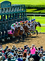 LEXINGTON, KENTUCKY - APR 07: Fans watch as horses leave the starting gate for an undercard race on opening day at Keeneland Race Course on April 7, 2017 in Lexington, Kentucky. (Photo by Scott Serio/Eclipse Sportswire/Getty Imagesz