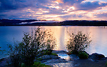 Idaho, Coeur d'Alene, Lake Coeur d'Alene. A view from Tubbs HIll with puddle and cloud reflections.