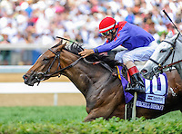 Hungry Island (10), with John Velazquez up, wins the Churchill Downs Distaff Turf Mile on Kentucky Derby Day at Churchill Downs in Louisville, Kentucky on May 5, 2012.