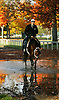 Captain Slew, Carl O'Callaghan up.  Saratoga, October 2004.