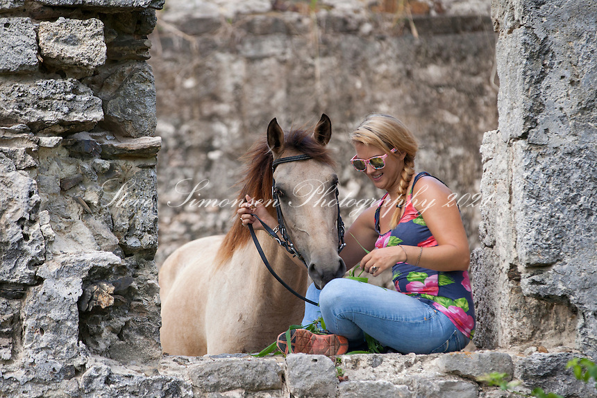 Horses at Butler Bay Ruins<br />