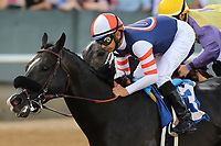 HOT SPRINGS, AR - APRIL 15: Midnight Storm #3, with jockey Mike Smith aboard at the start of the the Oaklawn Handicap at Oaklawn Park on April 15, 2017 in Hot Springs, Arkansas. (Photo by Justin Manning/Eclipse Sportswire/Getty Images)