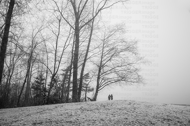 Two pepole standing a the top  of a small hill, with trees, heavy frost and fog.