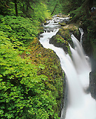 Visitors enjoying view of Sol Duc Falls, Olympic National Park, Washington, USA.