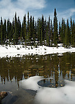 The clear water of Balsam Lake in Mount Revelstoke National Park in Canada