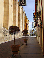 Historic Center in Cordoba, Spain.