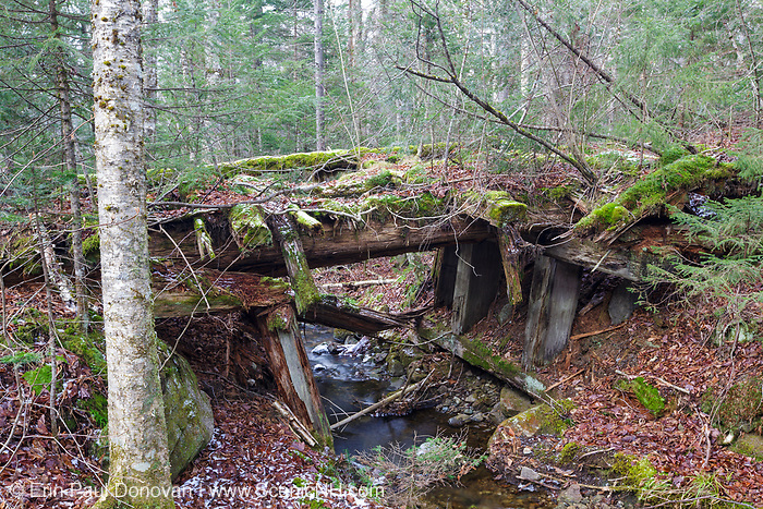 Side view of a decaying timber bridge along the abandoned Mt Washington Branch of the Boston and Maine (B&M) Railroad in the White Mountains, New Hampshire USA. The Mt Washington Branch was built by the Boston, Concord & Montreal Railroad and completed in 1876. This branch traveled from the Fabyan House to the base of the Cog. The branch was closed in June 1932 (+/-).