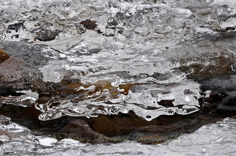 &quot;RIVER ICE-3&quot;<br /> <br /> Ice formations along a river's edge creating intricate and beautiful designs