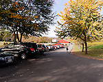 On a busy day, cars line the drive leading to the winery at Barboursville Vineyards.