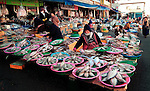 A wide variety of fish available at the fish market in Gyeongju, South Korea.