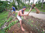Michael Lariyon digs a ditch for a water pipe as part of a cash for work program in the village of Cambayan in the Philippines province of Samar. The region was hit hard by Typhoon Haiyan in November 2013. Known locally as Yolanda, the storm left much of the community's infrastructure a shambles. Norwegian Church Aid, a member of the ACT Alliance, is helping the community rehabilitate its potable water system as well as build new toilets.