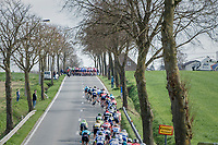 Teh splitted peloton regroups just ahead of the 1st ascent of the Kemmelberg<br /> <br /> 79th Gent-Wevelgem 2017 (1.UWT)<br /> 1day race: Deinze &rsaquo; Wevelgem - BEL (249km)