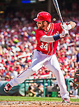 28 September 2014: Washington Nationals outfielder Bryce Harper at bat in the second inning against the Miami Marlins at Nationals Park in Washington, DC. The Nationals shut out the Marlins 1-0, caping the season with the first Nationals no-hitter in modern times. The win also notched a 96 win season for the Nats: the best record in the National League. Mandatory Credit: Ed Wolfstein Photo *** RAW (NEF) Image File Available ***
