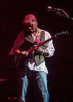 Vernon Reid (Spectrum Road)