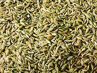 Whole fennel seeds - stock photos