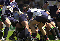 01/06/2002.Sport -Rugby  Union.Zurich Championship - Semi final.Bristol Shoguns_vs_Northampton Saints.Agustin Pichot   [Mandatory Credit, Peter Spurier/ Intersport Images].