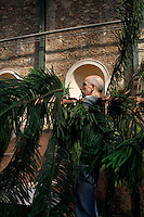 New Caledonia Glasshouse (formerly The Mexican Hothouse), 1830s, Charles Rohault de Fleury, Jardin des Plantes, Museum National d'Histoire Naturelle, Paris, France. Detail of a gardener working at the plantation of an Araucaria, an evergreen coniferous tree.<br /> The New Caledonia Glasshouse, or Hothouse, was the first French glass and iron building.