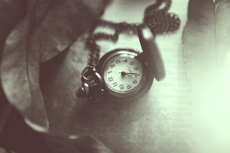 Close up shot of a vintage clock with leaves in black and white