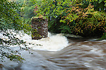 Flooding on the North Esk, 13th October 2012