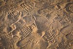 Footprints in dirt near Fredericksburg, Texas, Friday, July 24, 2009. (Darren Abate/pressphotointl.com)