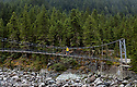 WA09944-00...WASHINGTON - Hiker on bridge crossing the Carbon River in Mount Rainier National Park. (MR# K1)