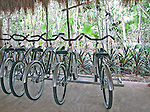 Bikes parked in the Mexican jungle
