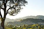 Edgehill View shots