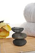 Flower and Rocks in a Zen setting