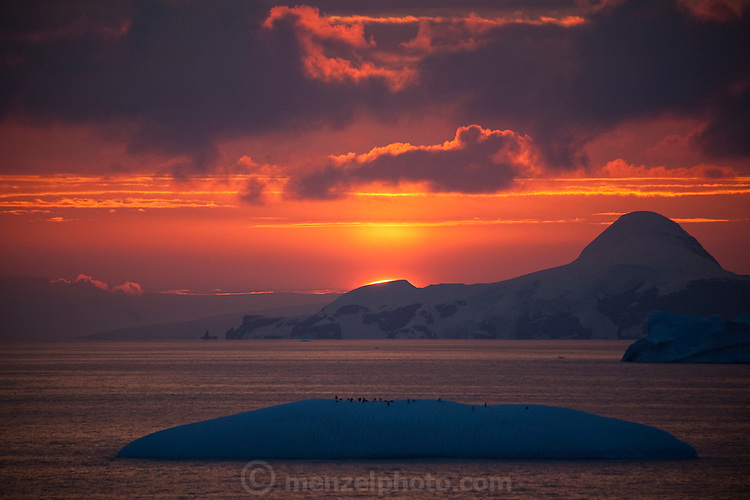 Sunset at 11 pm in Wilhelmina Bay, Antarctic Peninsula. Penguins on an ice flow in the foreground.