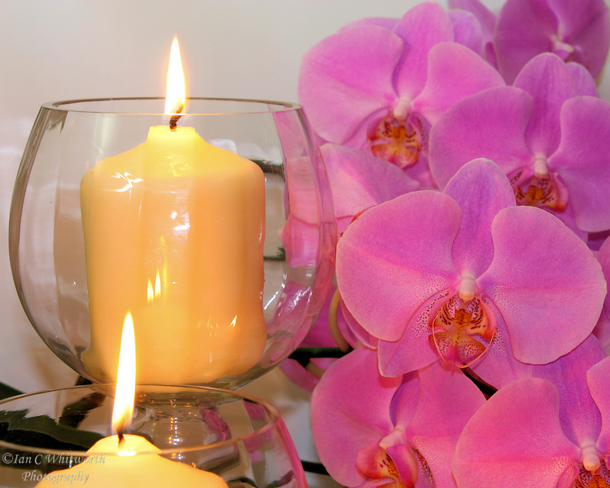Candles Shine On Orchids Ian C Whitworth Photography