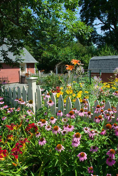 Backyard Garden Florist : Perennial flower garden in sunny summer backyard  Plant & Flower