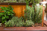 "A small portion of Orange Coast College's Ornamental Horticulture Club's first-place winning garden installation at the 2012 South Coast Plaza Spring Garden Show in Costa Mesa, CA.  The theme for the show was ""healing gardens"", and the OCC team installed a ""garden for the visually impaired.""  This image shows how many of the plants were described in braille."