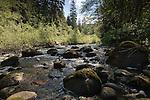 Moss covered boulders in creek. West coast highway, between Sook and Port Renfrew.Vancouver Island, British Columbia, Canada.