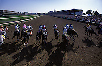 Horses break from the starting gate and run down the stretch in the beginning of the Kentucky Derby race.