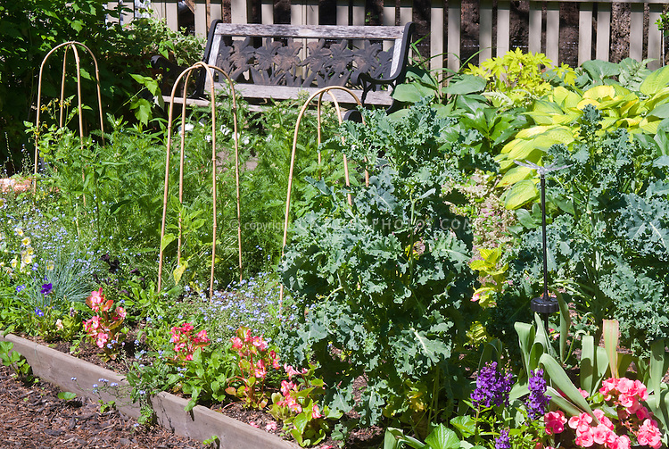 Edible Landscaping With Flowers And Vegetables Herbs