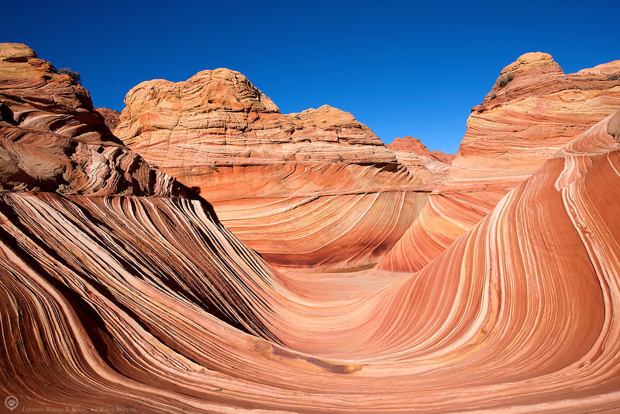 A view of the famous Wave in the Vermillion-Cliffs Wilderness