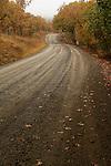 A rural road winds through oak woodlands in autumn near Medford, Oregon