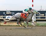 Parx Racing Win Photos_12-2014