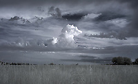 An infrared image taken of a single clouds stand out over a field in Greene County, VA. Photo/Andrew Shurtleff