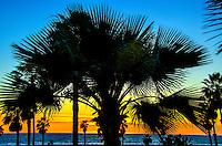 Santa Monica Beach, Wednesday, February 5, 2014.