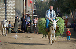 A man rides a donkey through the Egyptian village of Kafr Darwish.