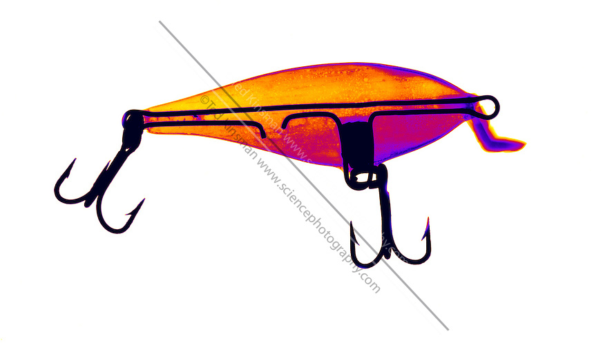 An X-ray of a fishing lure.  The x-ray shows the internal wires that strengthen the lure and connect the hooks to the fishing line...