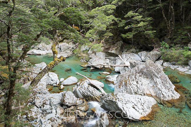 Pristine waters of Route Burn River on Routeburn Track, Mt. Aspiring National Park, Central Otago, UNESCO World Heritage Area, New Zealand, NZ