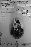 ritratto del conte Vlad, con albero genealogico portrait du comte Vlad, avec arbre généalogique, portrait of Count Vlad, with family tree